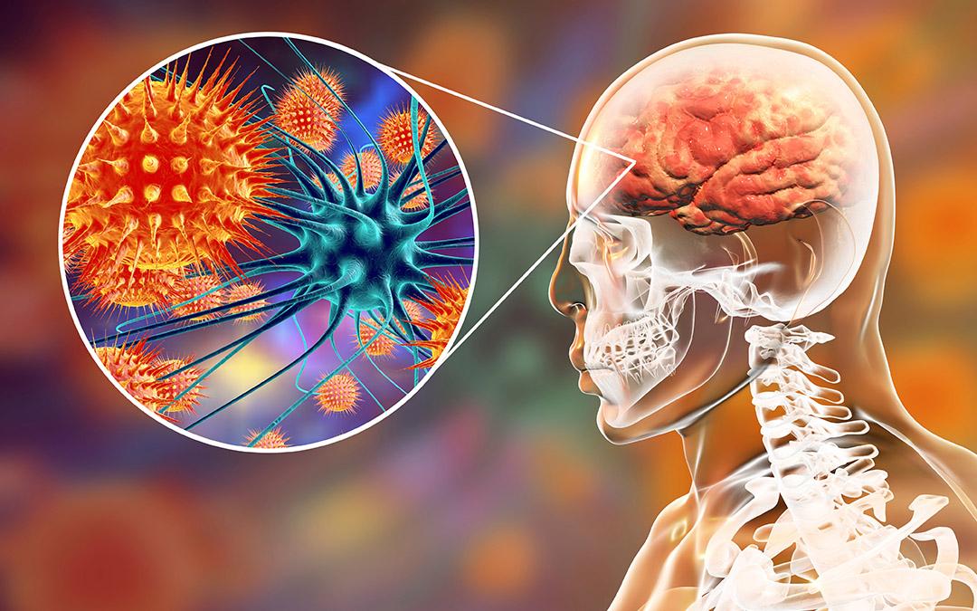 World Meningitis Day: A guide to understand Meningitis