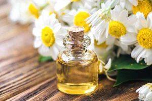 Essential oils benefits chamomile oil mfine