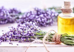 Essential oils benefits lavender mfine