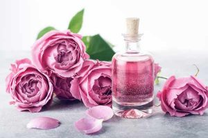 essential oils benefits rose oil mfine