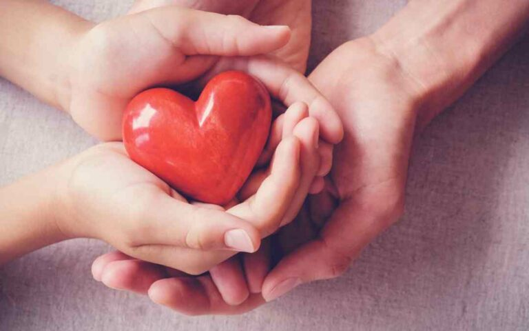 Giving The Gift of Life: 5 Organs That Can Be Donated